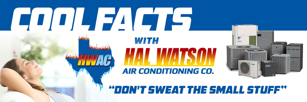 Cool Facts with Hal Watson AC: Don't Sweat The Small Stuff