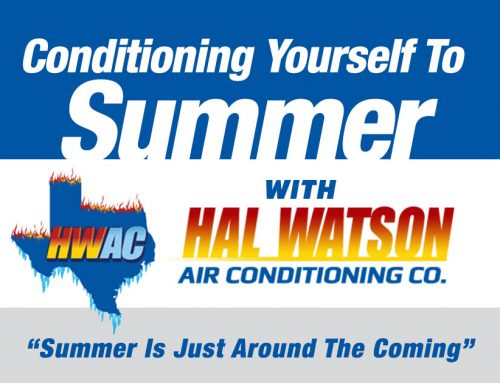 Conditioning Yourself To Summer With Hal Watson